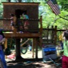 treehouse photo 15